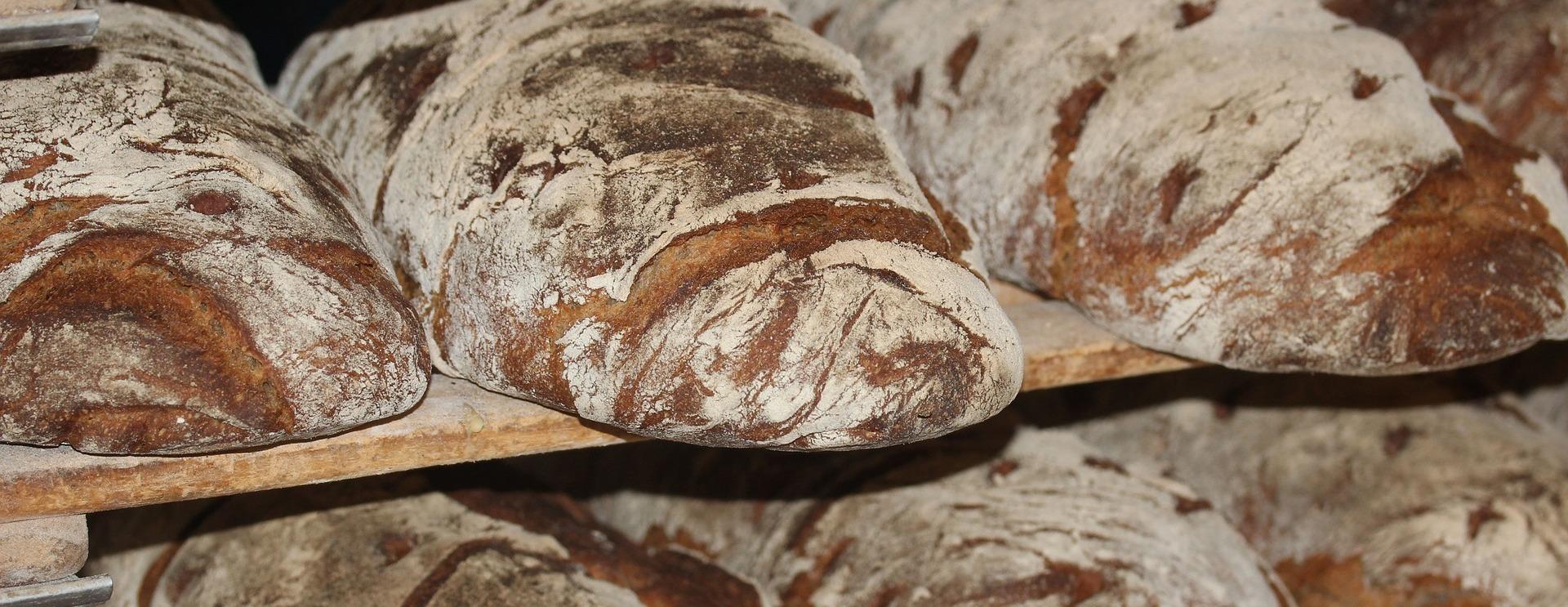 В России появится производство полезного хлеба