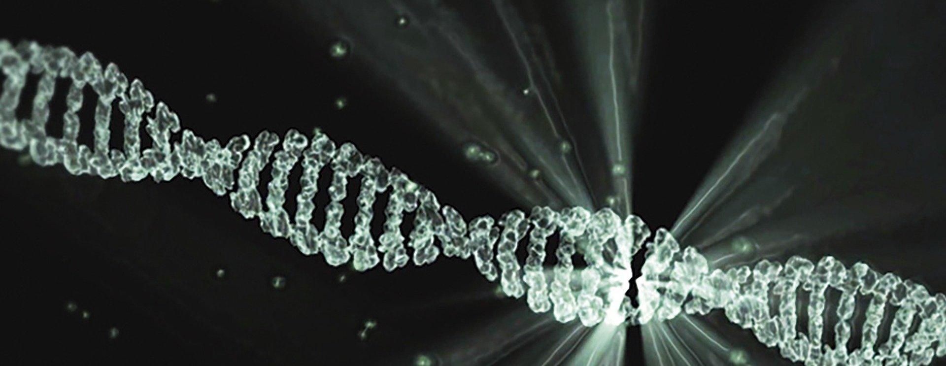 Впервые геном расшифровали на российском оборудовании