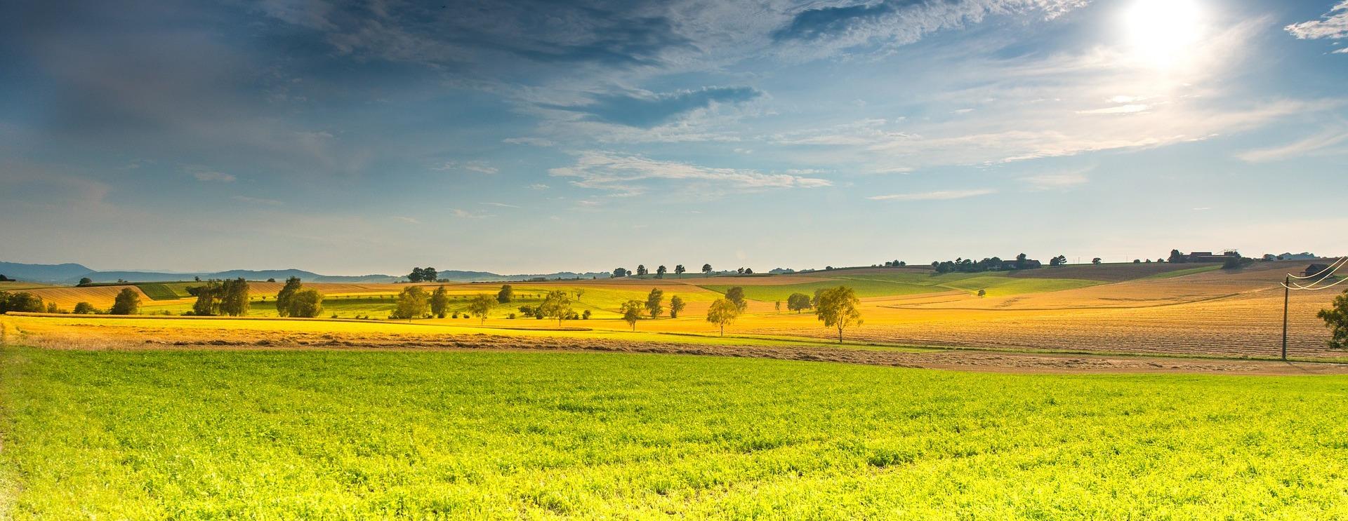 Установлен новый порог минимального надела для сельхозпроизводителей Кубани