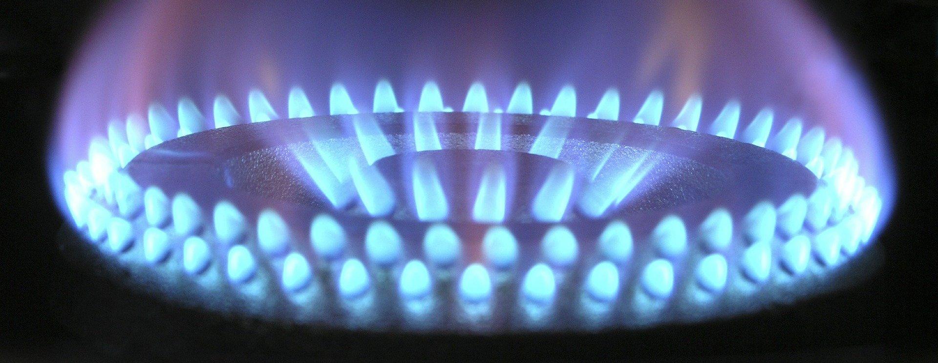 Президент Белоруссии назвал стоимость российского газа